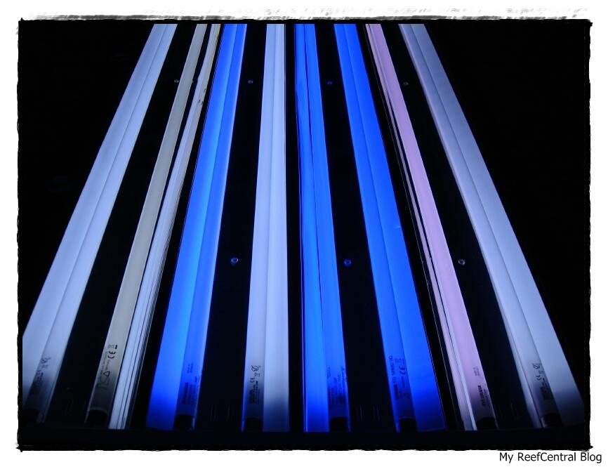 Iluminação: Calha lâmpadas T5 (Português) (3/6)